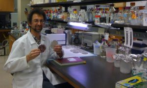 Prof Berger in the Lab at the University of Arkansas