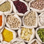 Pulses key in combating hunger and food insecurity